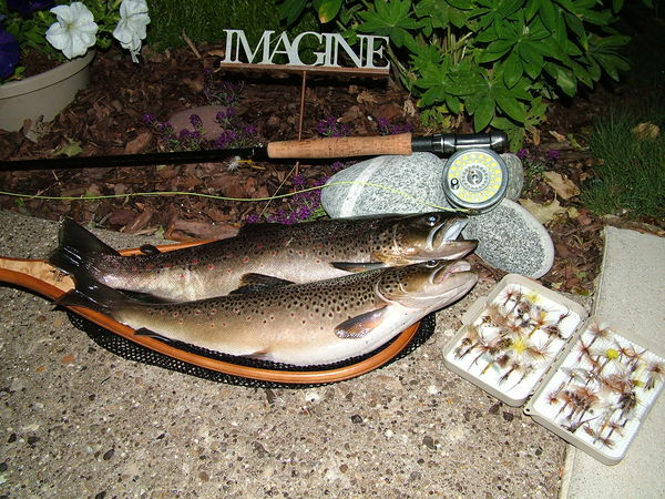 now and then a few trout kept for the dinner table...