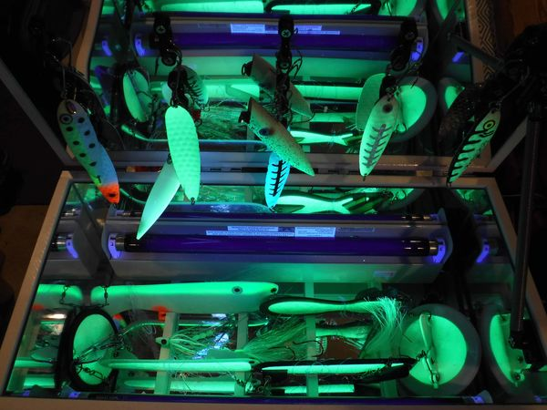 the UV light sources are already performing their ...